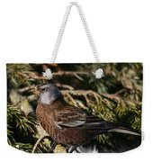 Gray-crowned Rosy Finch Weekender Tote Bag