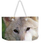 Gray Wolf Face Weekender Tote Bag