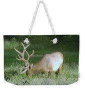 Grazing Elk Weekender Tote Bag