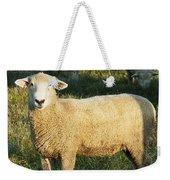 Grazing Sheep. Weekender Tote Bag