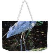 Great Blue Heron, Florida Weekender Tote Bag
