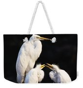 Great Egret In Nest With Young Weekender Tote Bag
