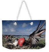Great Frigatebirds Courting Weekender Tote Bag