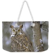 Great Horned Owl In Its Pale Form Weekender Tote Bag by Tim Fitzharris