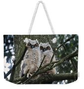 Great Horned Owls Young Weekender Tote Bag