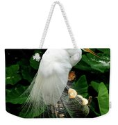 Great White Egret With Breeding Plumage Weekender Tote Bag