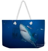 Great White Shark And Pilot Fish Weekender Tote Bag