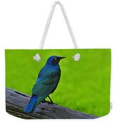 Greater Blue-eared Starling Weekender Tote Bag