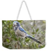 Greedy Florida Scrubjay Weekender Tote Bag