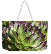 Green And Red Succulent Weekender Tote Bag