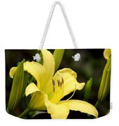 Green And Yellow - Lily Weekender Tote Bag