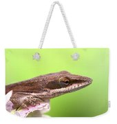 Green Anole In Pastels Weekender Tote Bag