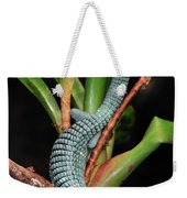 Green Arboreal Alligator Lizard Abronia Weekender Tote Bag