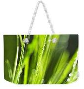 Green Dewy Grass  Weekender Tote Bag by Elena Elisseeva