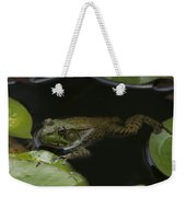 Green Frog And Lily Pads 9613 Weekender Tote Bag