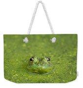 Green Frog Eyes Weekender Tote Bag