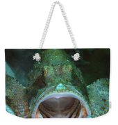 Green Grouper With Open Mouth, North Weekender Tote Bag by Mathieu Meur