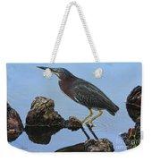 Green Heron Visiting The Pond Weekender Tote Bag