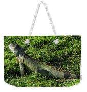 Green Iguana Weekender Tote Bag