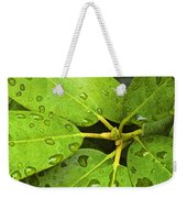 Green Leaves With Water Droplets Weekender Tote Bag