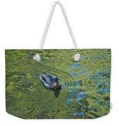 Green Pool Weekender Tote Bag
