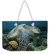 Green Sea Turtle Chelonia Mydas Weekender Tote Bag