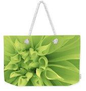 Green Sherbet Weekender Tote Bag