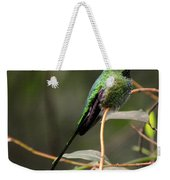 Green Tailed Trainbearer Weekender Tote Bag