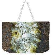 Green, White And Brown Flatworm, Bali Weekender Tote Bag