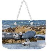 Grey Seals Weekender Tote Bag