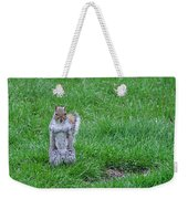 Grey Squirrel In The Rain II Weekender Tote Bag
