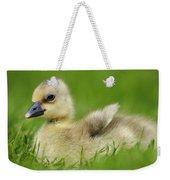 Greylag Goose Gosling Weekender Tote Bag