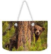 Grizzly Bear Cub Up A Tree, Yukon Weekender Tote Bag