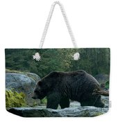 Grizzly Bear Or Brown Bear Weekender Tote Bag