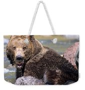 Grizzly Cavorts In Stream Weekender Tote Bag