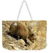 Grizzly On The Rocks Weekender Tote Bag