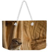Ground Squirrel At Monument Valley Weekender Tote Bag