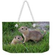 Ground Squirrels, Oak Hammock Marsh Weekender Tote Bag