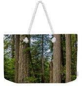 Group Of Redwoods Weekender Tote Bag