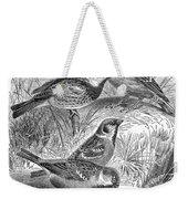 Group Of Sparrows Weekender Tote Bag