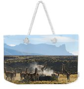 Guanacos In Action Weekender Tote Bag