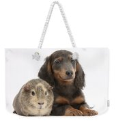 Guinea Pig And Blue-and-tan Dachshund Weekender Tote Bag