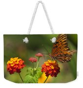 Gulf Fritillary Butterfly On Colorful Lantana  Weekender Tote Bag