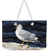 Gull 2 Weekender Tote Bag