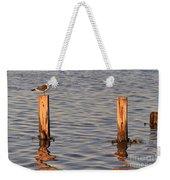 Gull At Sunset Weekender Tote Bag