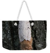 Gypsy Moth With Egg Mass Weekender Tote Bag