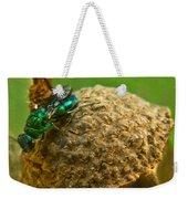 Halicid Wasp 4 Weekender Tote Bag