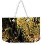 Hall Of Mosses Weekender Tote Bag