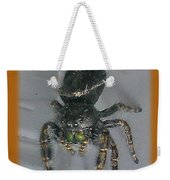 Halloween Party Invitation - Salticid Jumping Spider Weekender Tote Bag