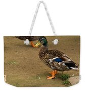 Handsome Mallard Weekender Tote Bag